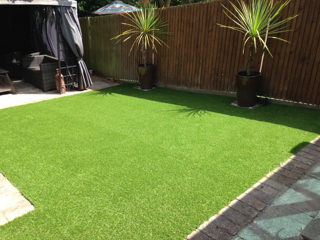 Grass for patio