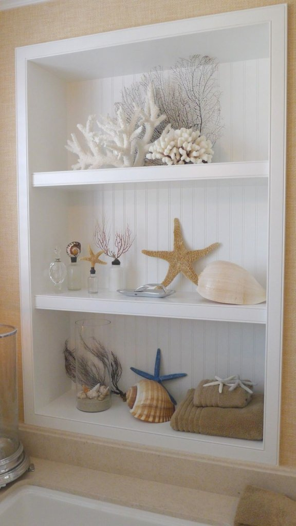 Seashells on shelves decor