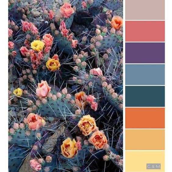 Flower Colors Palette