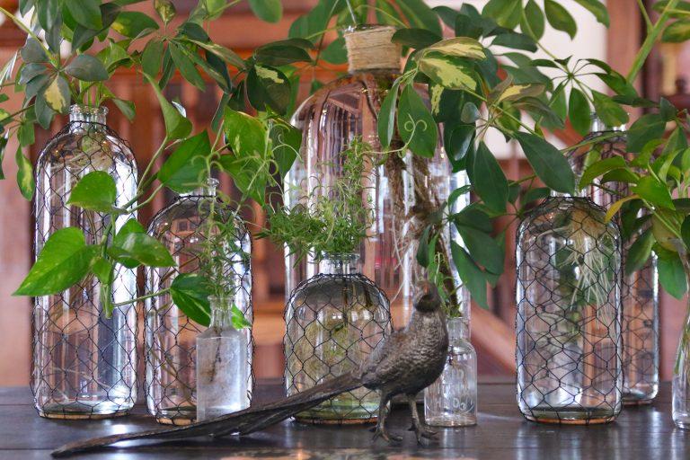 Make Self-Watering Pots From Plastic Bottles